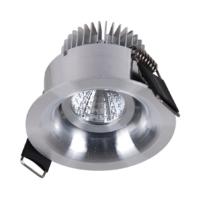 Adjustable 4W Mini Downlight