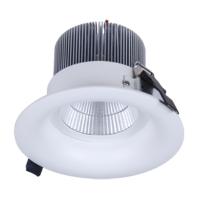 High Power COB Ceiling Light
