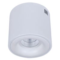 Surface Mounting COB Ceiling Light