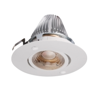 Tilt COB LED down light