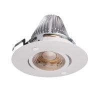 Tilt COB LED down light