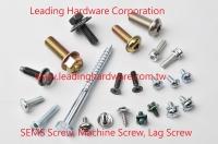 SEMS Screw, Machine Screw, Lag Screw