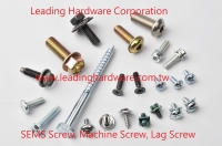 SEMS Screw, Machine Screw, Lag Screw