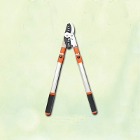 Ratchet bypass telescopic shear