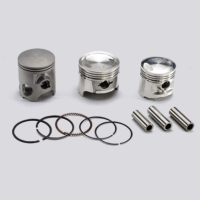 Pistons,  Piston Rings