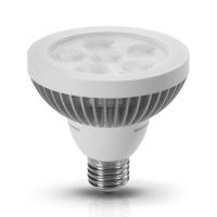 10W PAR30 LED Lamp