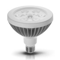 15W PAR38 LED Lamp