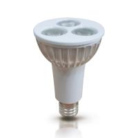 3W PAR16 LED Lamp