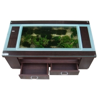 Wooden Aquarium Coffee Table