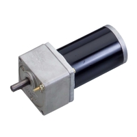 Electric Bicycle DC Motors