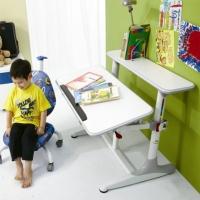 DR-303 人體工學書桌