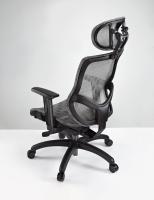 LD-001 萧邦人体工学 电脑网椅