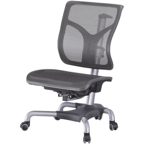 CM-268 成長網椅愛因斯坦系列