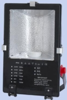 Metal Halide Outdoor Flood Lamp(150W)