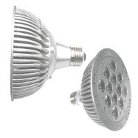 PAR Lights (PAR30 / PAR38)