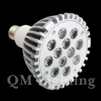 LED Bulb PAR38 (12*1W)