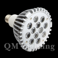 LED射燈 (12*1W)
