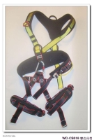 Climbing / Industrial Safety Belt