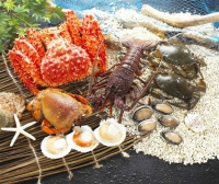 Cens.com King Crab JOHNSON SEAFOOD CO., LTD.