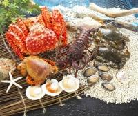 帝王蟹,花蟹,软壳蟹