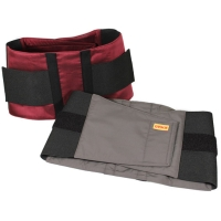 Cens.com Energy Lumbar Support HOME MART PRODUCT INC.