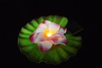 Solar Operated Flower Floating Light