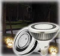 E26/ E27 底座, 18W LED PAR 38投射燈
