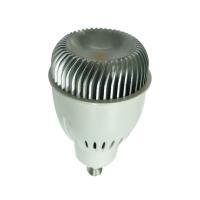 10瓦 LED投射燈