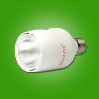 16W LED灯泡