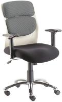 Executive & Director Chair