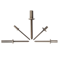 Closed End Steel Rivet With Steel Mandrel