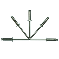 Stainless Steel Rivet With Stainless Steel Mandrel
