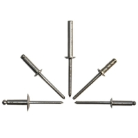 Large Flange Stainless Steel Rivet With Stainless Steel Mandrel