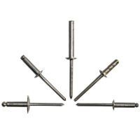 Closed End Stainless Steel Rivet With Stainless Steel Mandrel