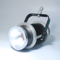 30W LED Spot