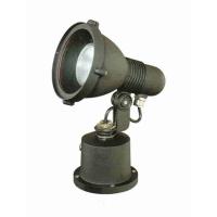30W RGB LED Spot