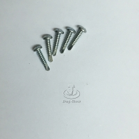 Phillips Pan-Head Self-drilling Screw