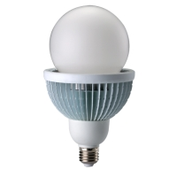 25W LED Light Bulb