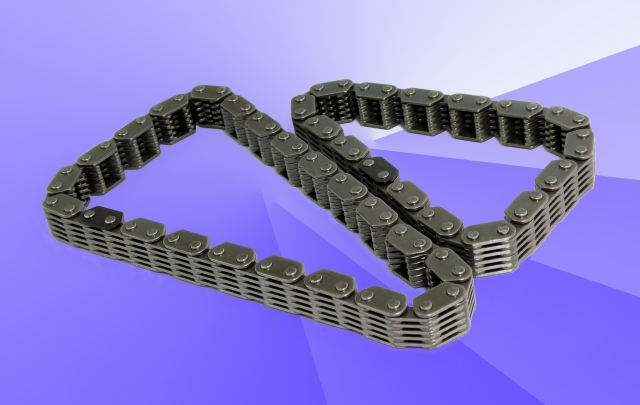 Heavy motorcycle chain