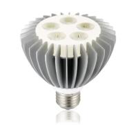 LED Lamp, LED Parlight