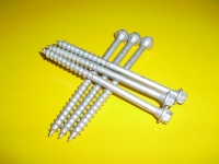 HDG Self-tapping Screw