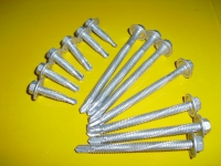 HDG Self-drilling Screw