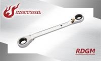 RDGM-Double Reversible
