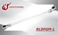 RLDFGM-L
