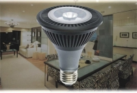 LED Flood - L500M6-PAR30