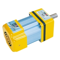 AC Induction Motor Lead wire type