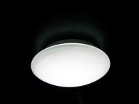 LED Ceiling Lamp 10 W