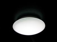 LED Ceiling Lamp 10 W