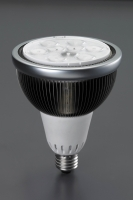 PAR30 / PAR 38 direct light