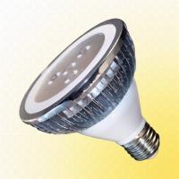 13W PAR30 LED Lamp